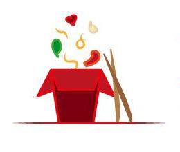 Mr. Hot-Wok Gerichte Chinesische Nudeln mit Hühnerfleisch und Gemüse